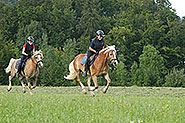 Horseback riding in St. Gilgen at lake Wolfgang