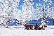 Horse carriage ride in Strobl at lake Wolfgang