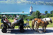 Horse carriage ride in St. Wolfgang at lake Wolfgang