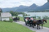 Kutschenfahrten in St.Wolfgang